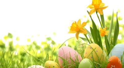 Easter Eggcitement image