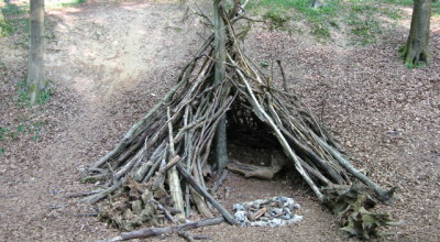Den-Building Adventures image