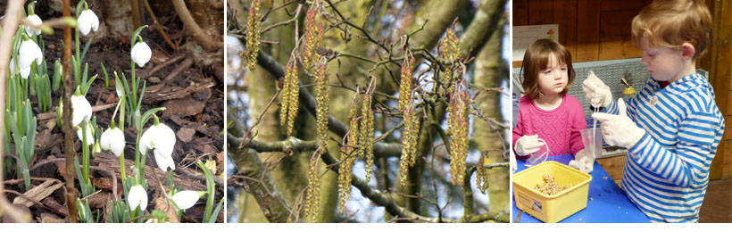 First Tingles of Spring image