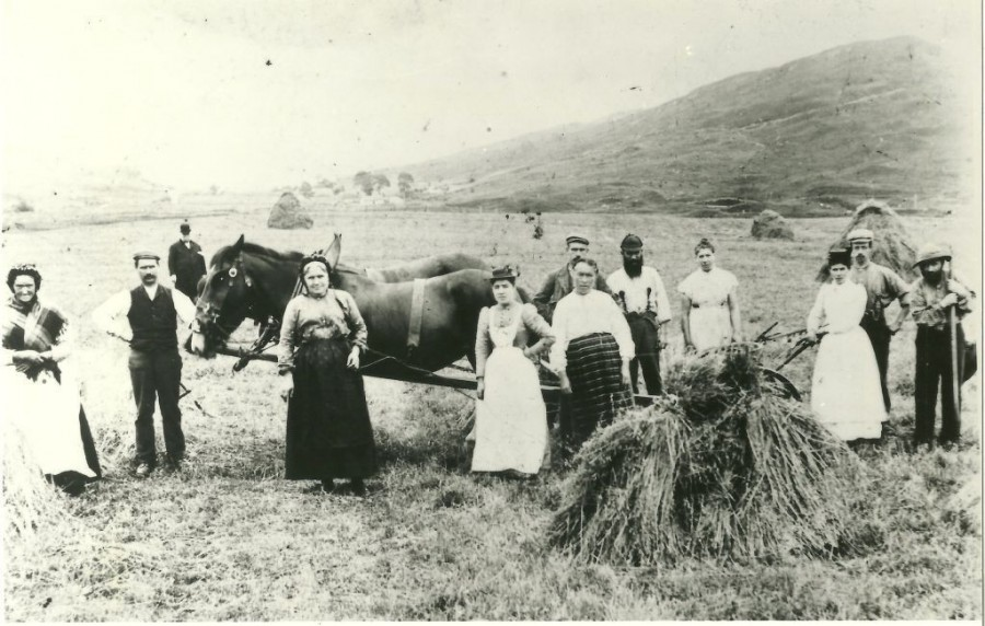 photograph of women and men at work in field at Auchindrain 1870s