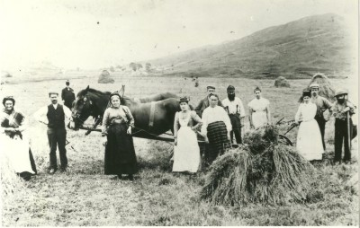 Harvesting oats at Auchindrain image