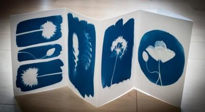 Cyanotype Workshop with Kit Martin image