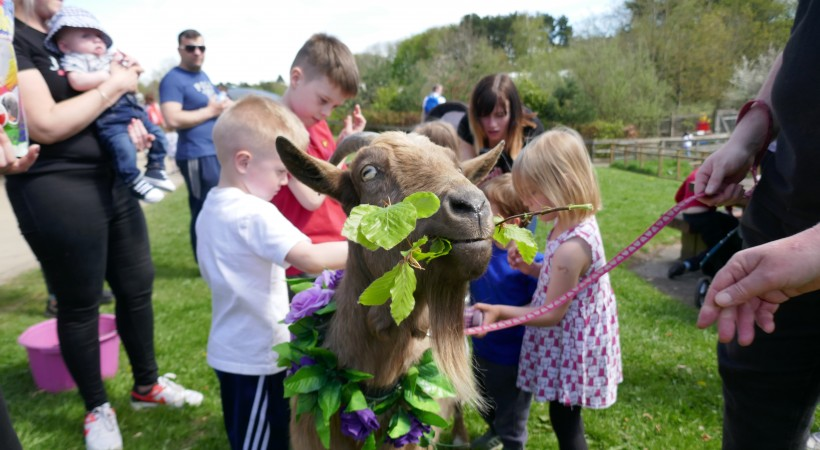 A Brilliant Beltane at Almond Valley image