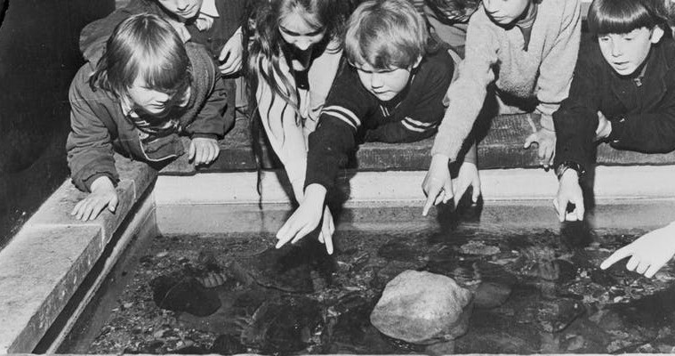black and white image of children looking in to an aquarium