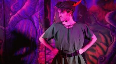 Peter Pan Pantomime image