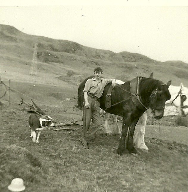 Photograph of Auchindrain, picturing Willie Weir, farm hand from 1956 until the MacCallum family left in 1963. Horses Polly and Rona are hooked up to a plough, ready to plough Auchindrain's Big Field