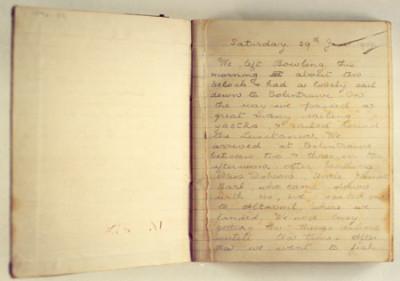 SY Carola Diary image